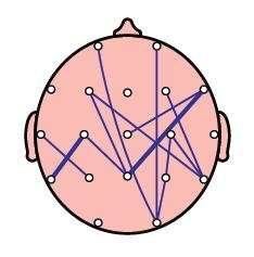 Évaluation des fonctions cérébrales